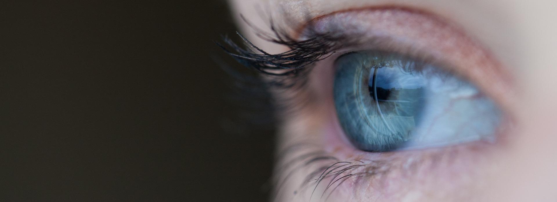 la puissance du regard